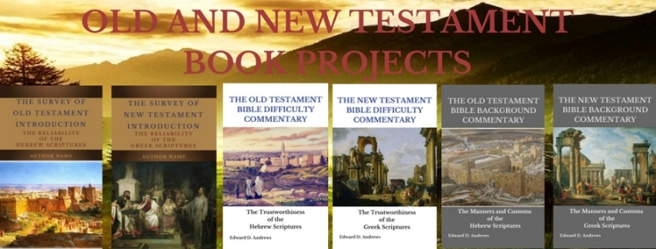 OLD and New Testament Book Projects