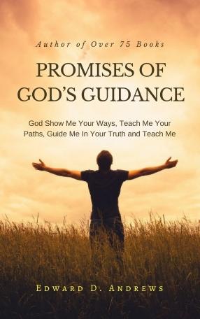 PROMISES OF GODS GUIDANCE