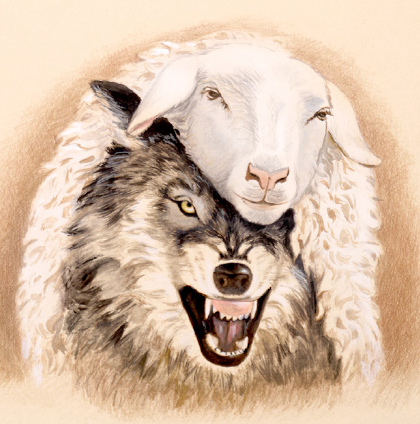 wolf in sheep clothing - false teachers, false prophets