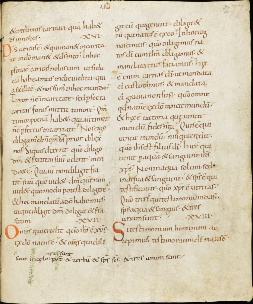 Sangallensis 63, Johannine Comma at the bottom